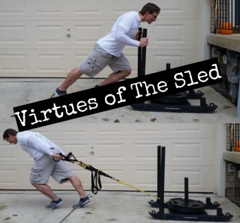 Virtues Of The Sled.