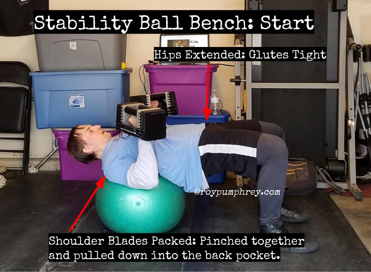 You Should Do This Stability Ball Dumbbell Bench Press